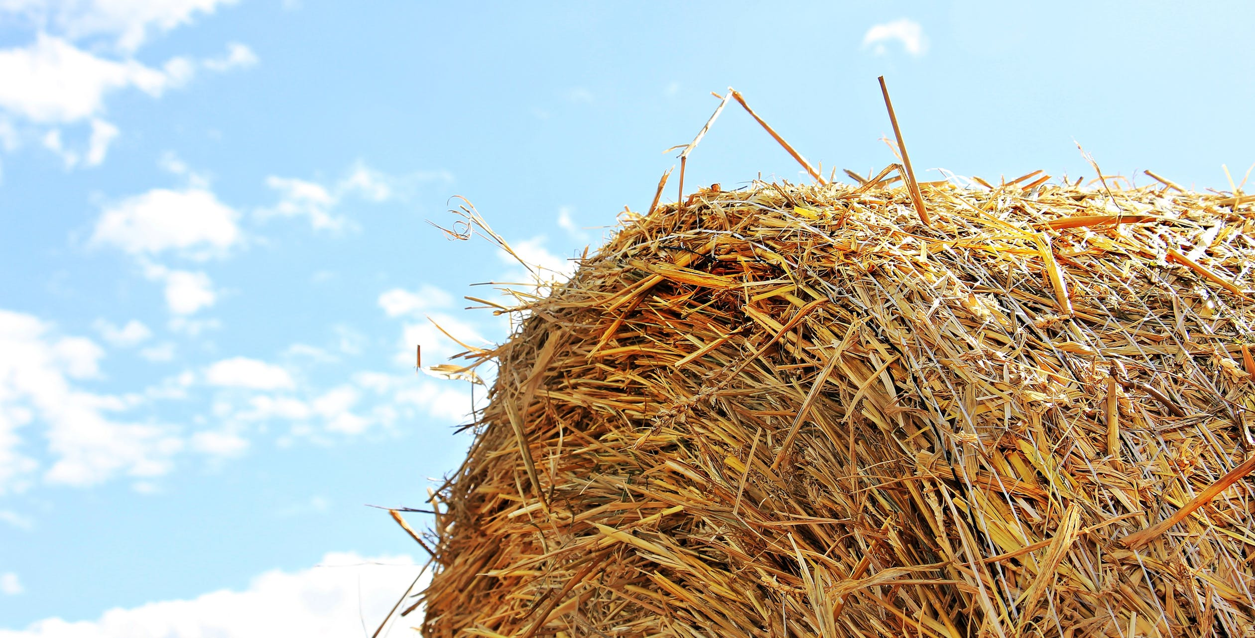 Close-up of a hay bale set against blue skies
