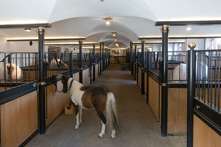 The Worlds Most Famous Horse Stables
